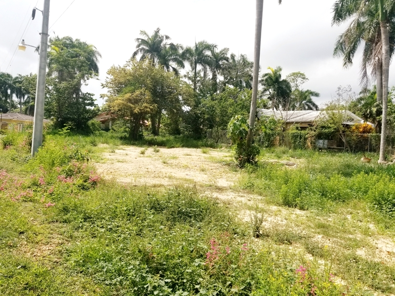 Affordable land in Cabarete