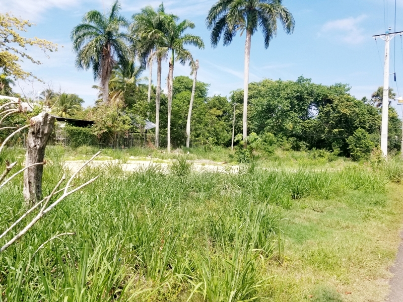 Building lot in beach community